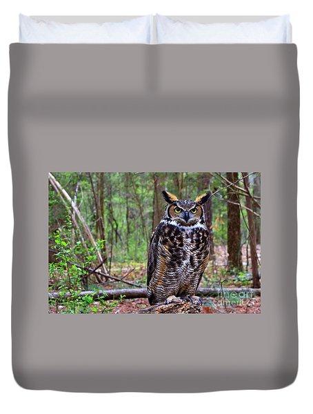 Great Horned Owl Standing On A Tree Log Duvet Cover