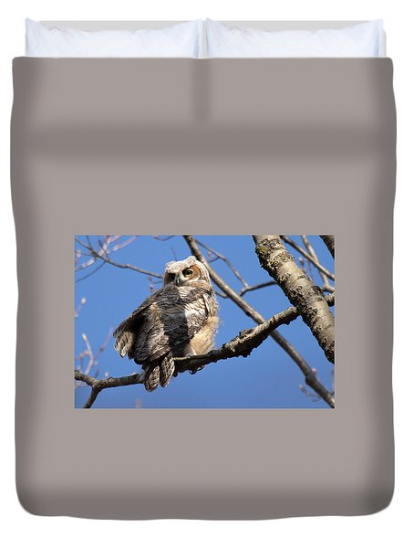 Great Horned Owlet 42915 Duvet Cover