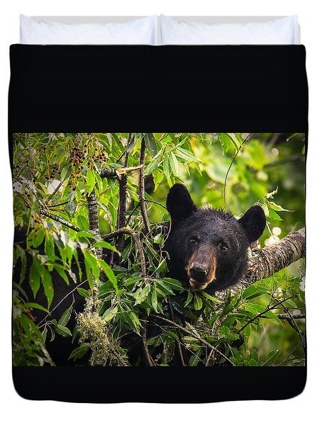 Great Smoky Mountains Bear - Black Bear Duvet Cover