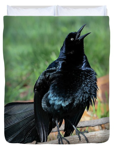 Great-tailed Grackle  Duvet Cover