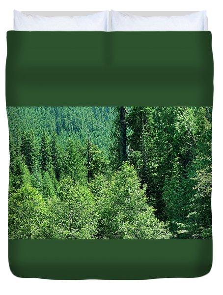 Green Conifer Forest On Steep Hillside  Duvet Cover