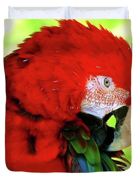 Green-winged Macaw Duvet Cover
