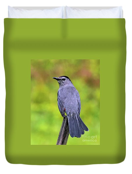 Grey Catbird Duvet Cover