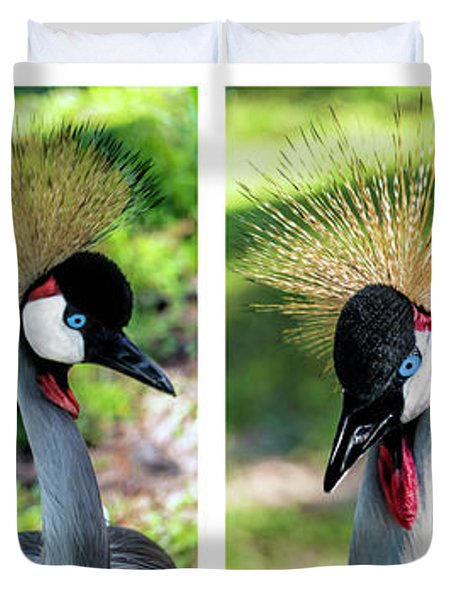 Grey Crowned Crane Gulf Shores Al Collage 1 Duvet Cover