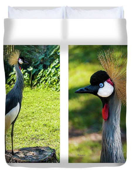 Grey Crowned Crane Gulf Shores Al Collage 10 Diptych Duvet Cover