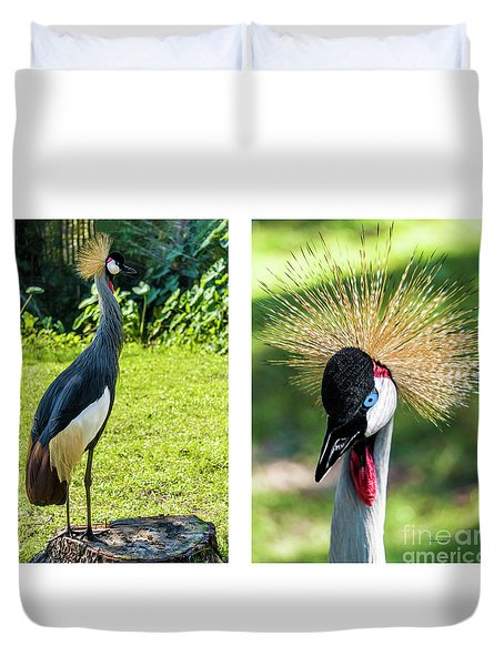 Grey Crowned Crane Gulf Shores Al Collage 8 Diptych Duvet Cover
