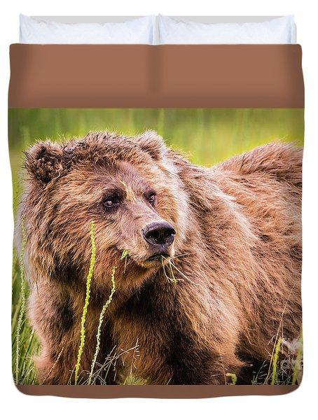 Grizzly In Lake Clark National Park, Alaska Duvet Cover