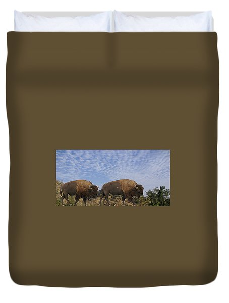 Group Of Bison Walking Against Rocky Mountains  Duvet Cover