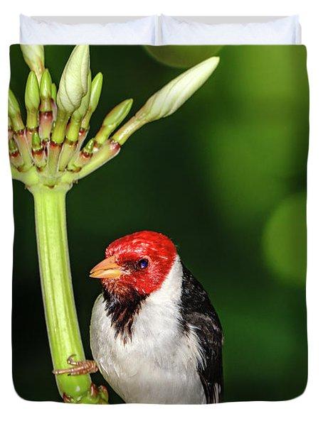 Happy Valentine's Day Bird Duvet Cover
