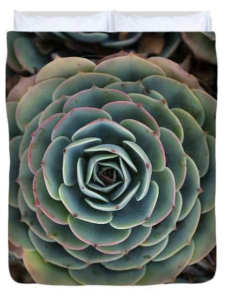 Hen And Chicks Succulent Duvet Cover