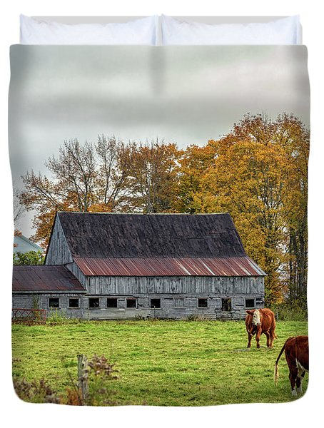 Herefords In Fall Duvet Cover