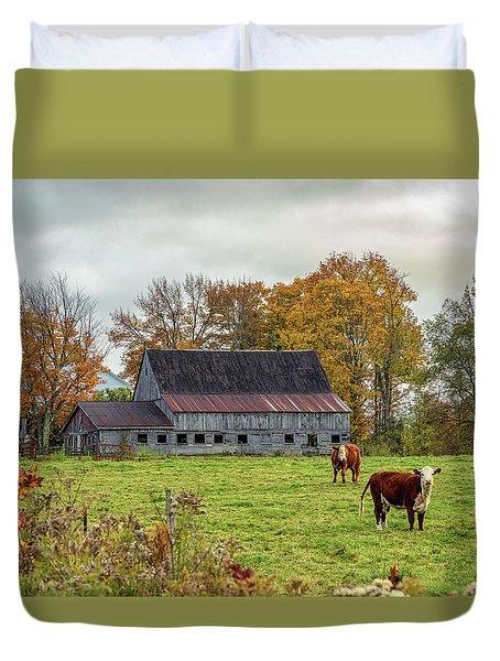 Herefords In Fall Duvet Cover