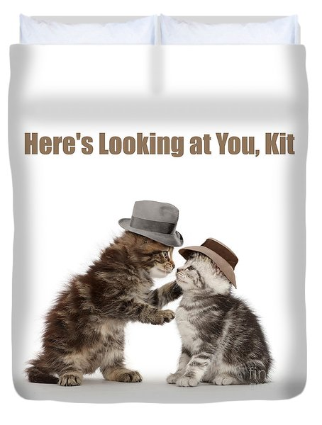 Duvet Cover featuring the photograph Here's Looking At You, Kit by Warren Photographic