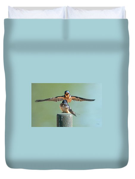 Hey, Babe, Let's Rock N Roll.  Barn Swallows Duvet Cover