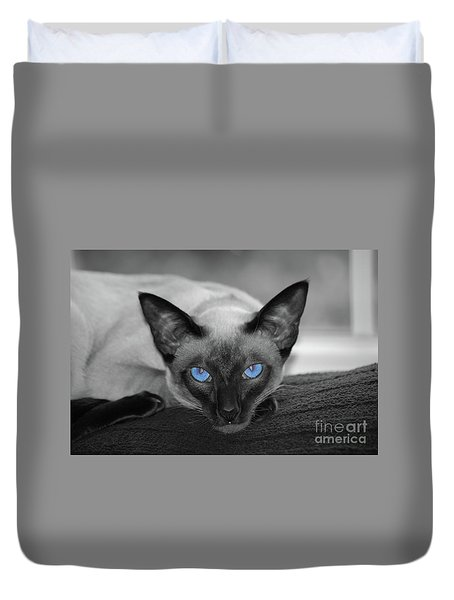 Hey There Blue Eyes - Siamese Cat Duvet Cover