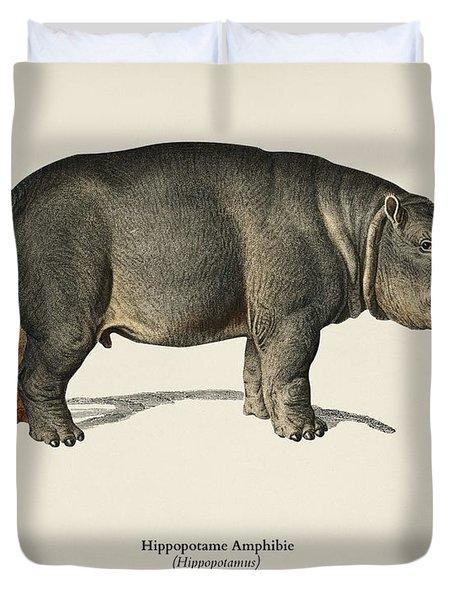 Hippopotamus  Hippopotame Amphibie Illustrated By Charles Dessalines D' Orbigny  1806-1876  Duvet Cover