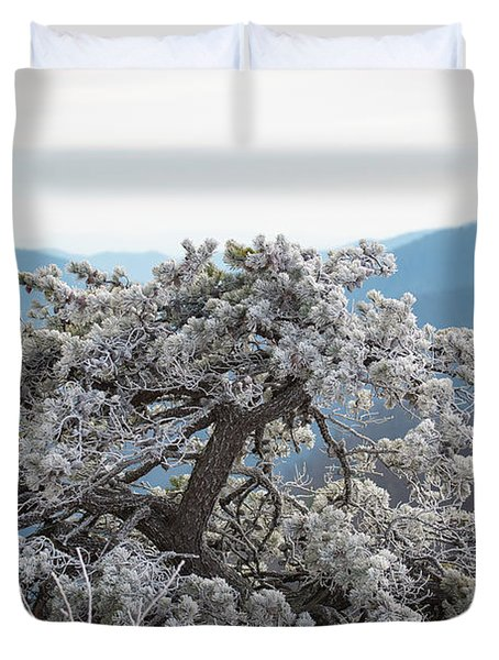 Hoarfrost In The Blue Ridge Mountains Duvet Cover