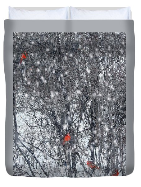 Home Of The Cardinals Duvet Cover