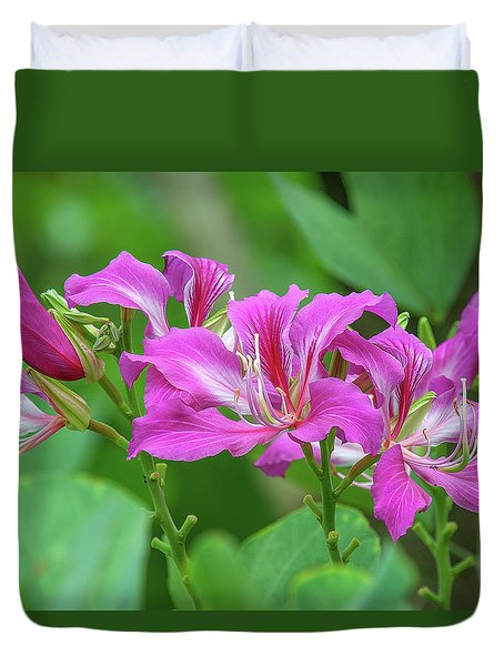 Duvet Cover featuring the photograph Hong Kong Orchid Tree Dthn0263 by Gerry Gantt