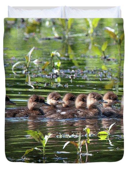 Hooded Merganser Ducklings Dwf0203 Duvet Cover