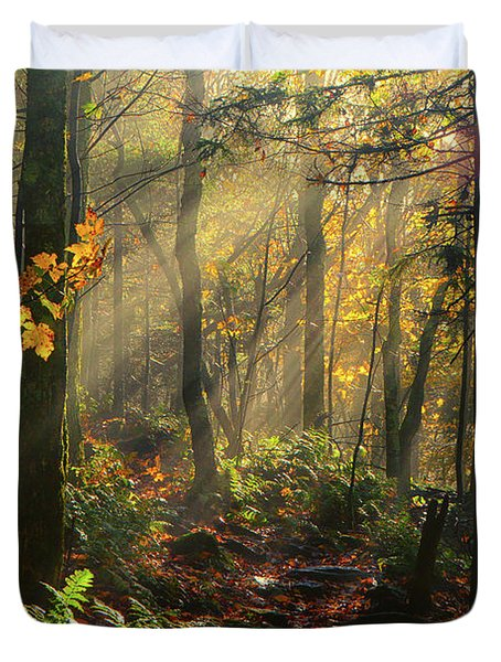 Horizontal Rays Of Sun After A Storm Duvet Cover