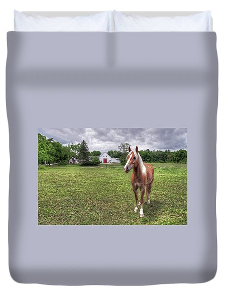 Duvet Cover featuring the photograph Horse In Pasture by Wayne Marshall Chase