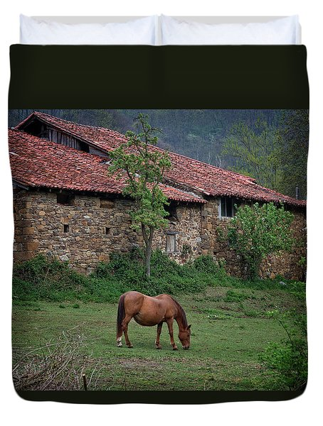 Horse In The Field Next To A Rural House Duvet Cover