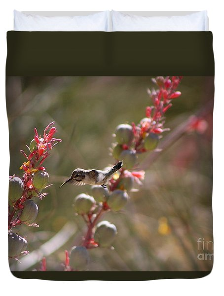 Hummingbird Flying To Red Yucca 1 In 3 Duvet Cover
