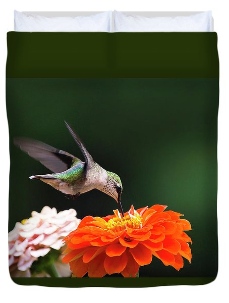 Hummingbird In Flight With Orange Zinnia Flower Duvet Cover