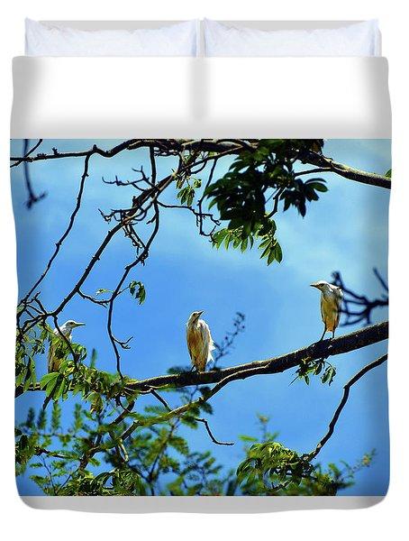 Ibis Perch Duvet Cover