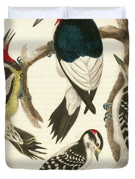 1. Red-headed Woodpecker. 2. Yellow-bellied Woodpecker. 3. Hairy Woodpecker. 4. Downy Woodpecker. Duvet Cover