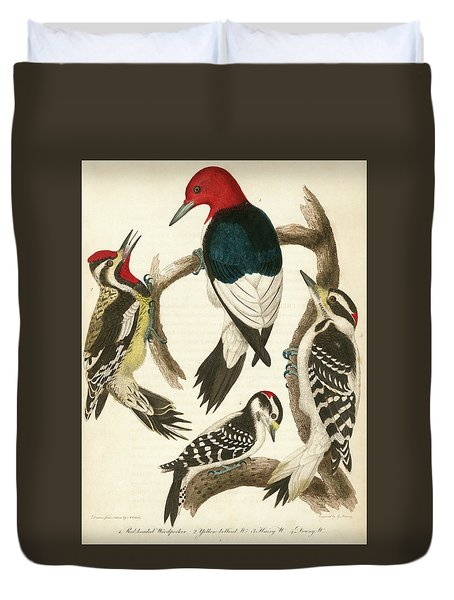 1. Red-headed Woodpecker. 2. Yellow-bellied Woodpecker. 3. Hairy Woodpecker. 4. Downy Woodpecker. Duvet Cover