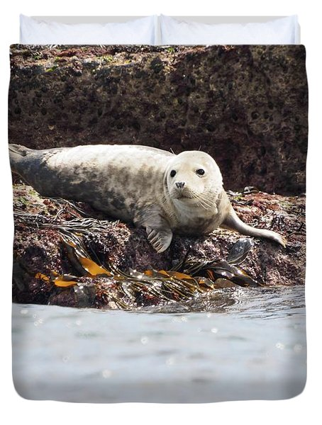 Harbor Seal - Supporting World Wide Fund For Nature Duvet Cover