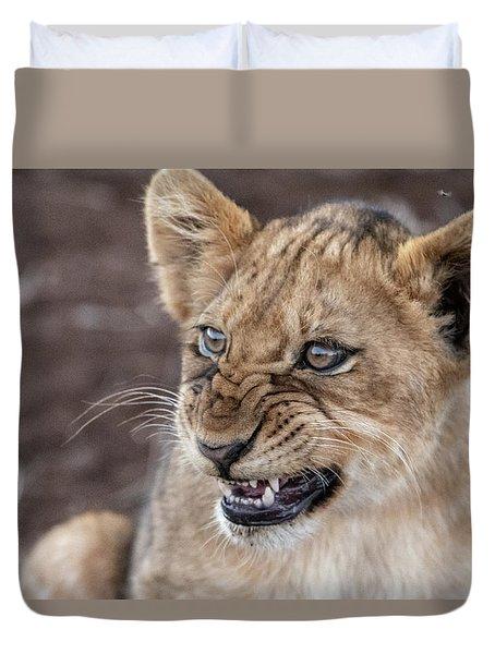 Irritated Lion Cub Duvet Cover