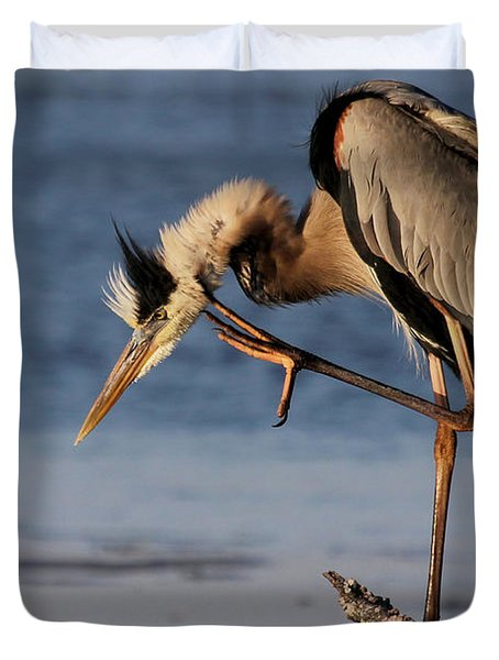 Itchy - Great Blue Heron Duvet Cover