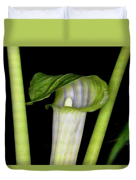 Jack In The Pulpit Duvet Cover