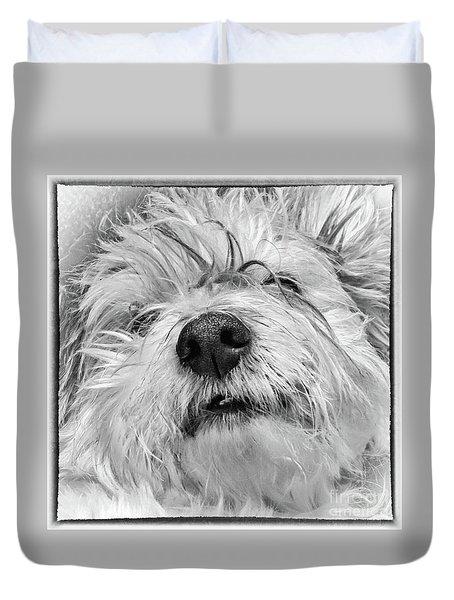 Coton De Tulear Dog Duvet Cover