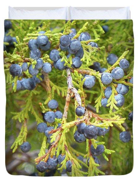 Juniper Berries Duvet Cover