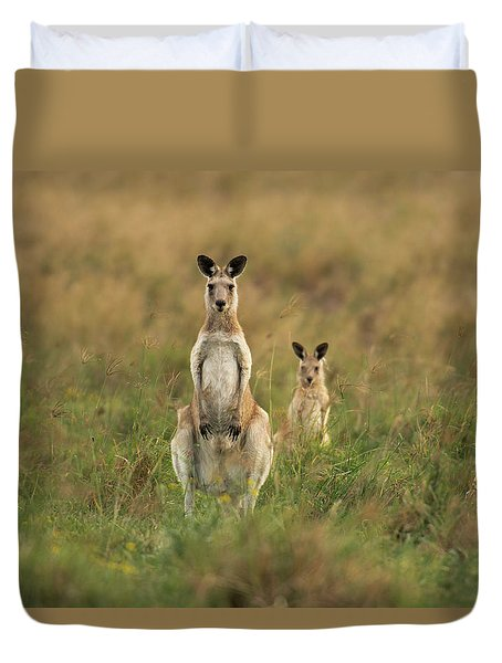 Kangaroos In The Countryside Duvet Cover