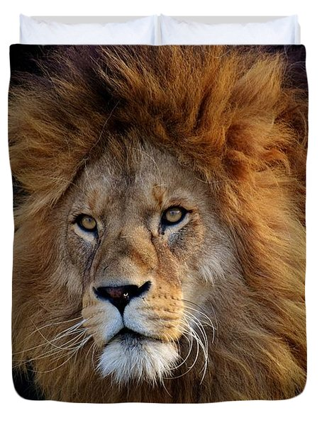 King Lion Duvet Cover