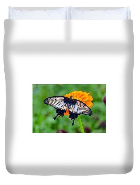 Kite Swallowtail  Duvet Cover