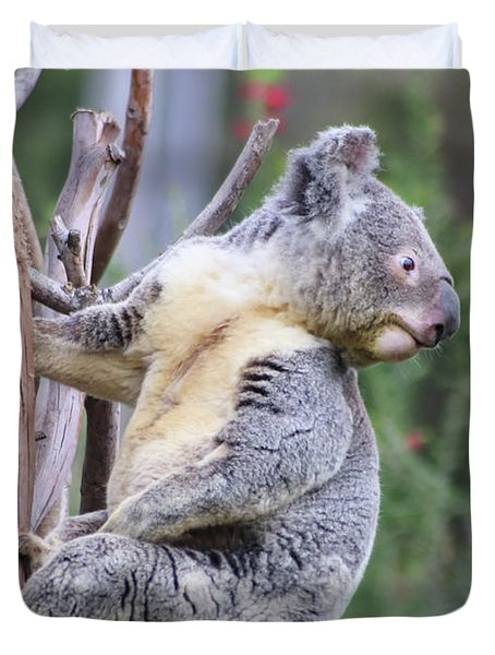 Koala In Tree Duvet Cover