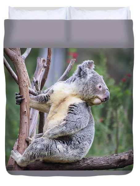 Duvet Cover featuring the photograph Koala In Tree by Dawn Richards