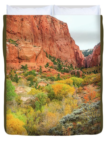 Kolob Canyon 2, Zion National Park Duvet Cover