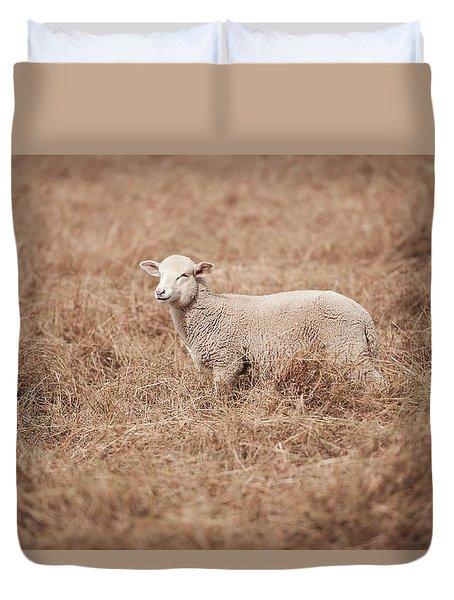 Lamb Duvet Cover