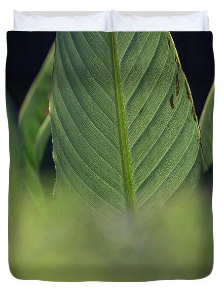 Large Dark Green Leaves Duvet Cover