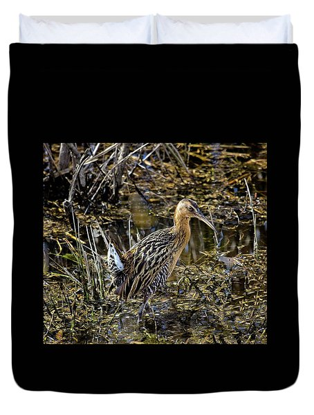 Largest North American Rail Duvet Cover