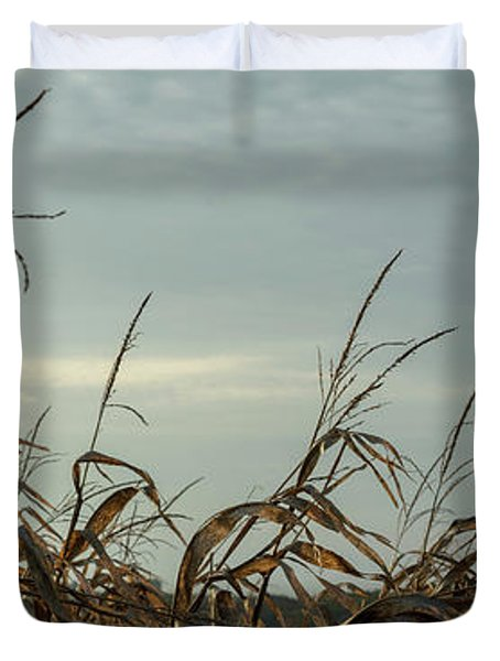Late Season Corn Stalks Panorama Duvet Cover