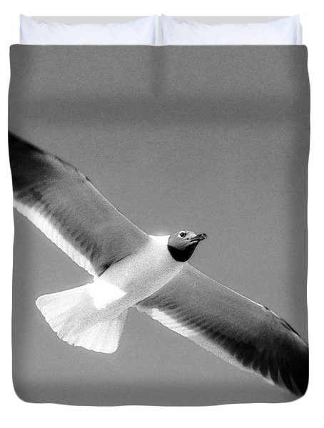 Laughing Seagull Duvet Cover