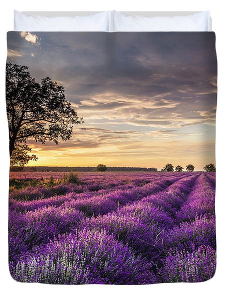 Lavender Sunrise Duvet Cover
